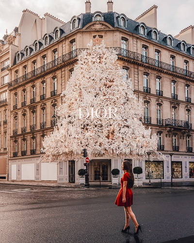 Christmas in Paris Dior white Christmas tree by Dancing the Earth