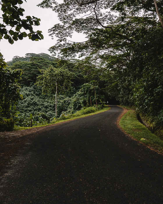 Road to Huahine belvedere by Dancing the Earth