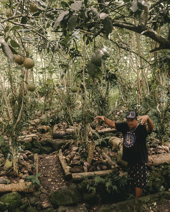 French Polynesia travel guide Vanilla valley in Taha'a by Dancing the Earth