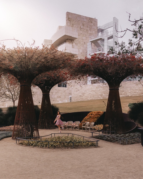 Getty Center flowers trees by Dancing the Earth