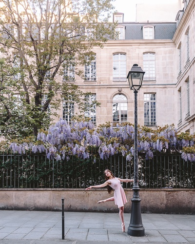 Spring in Paris wisteria by Dancing the Earth