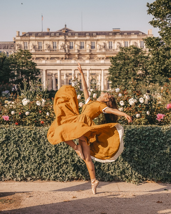 Summer in Paris roses in Palais Royal garden by Dancing the Earth