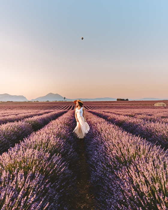 Provence sunrise in the lavender fields by Dancing the Earth