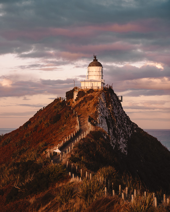 Golden light on Nugget Point Lighthouse, Dancing the Earth